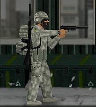 Armydcusurv-sdw