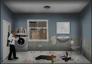10 Smith bathroom
