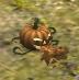 Decoy Pumpkin Bomb