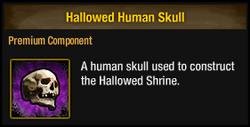 Hallowed Human Skull