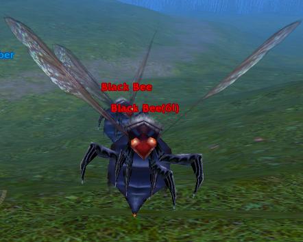 File:Black Bee.png