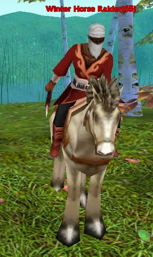 Winter Horse Raider