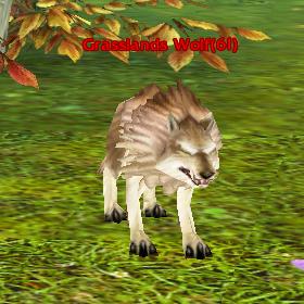 Grasslands Wolf