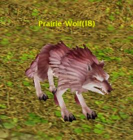 Prairie Wolf