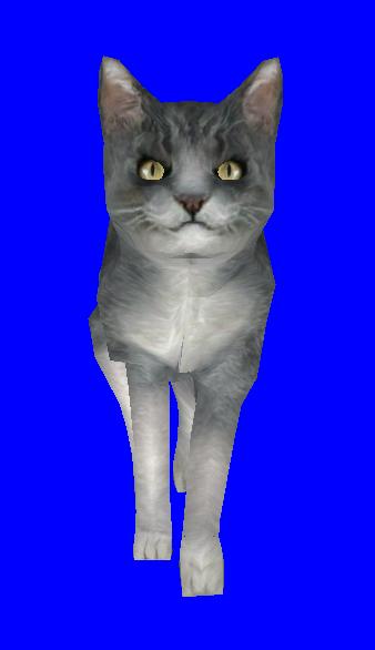 Файл:Cat.PNG