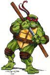 2521017-turtle1392