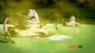 Schermafbeelding 2013-03-02 om 01.56.06