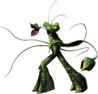 Snakeweed bio