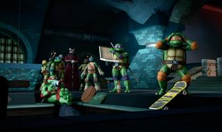 Trans-Dimensional-Turtles006