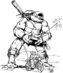 2500562-turtle106