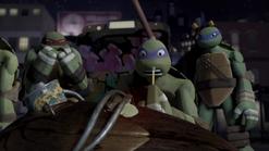 S01E18 Turtles roadkill