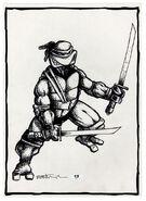 2509359-turtle1014