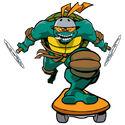 2500764-turtle374