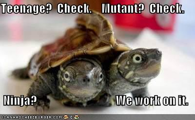 File:Funny-pictures-tmnt-turtles.jpg