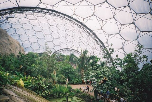 File:Eden project tropical biome.jpg