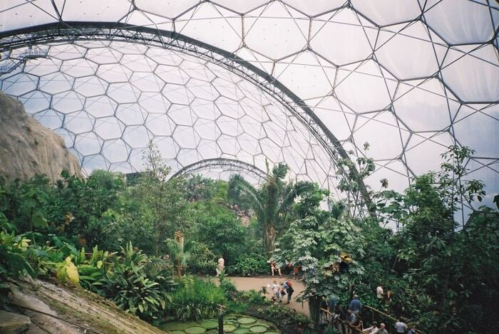 Eden project tropical biome