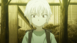 Young Accelerator