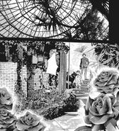 Tsukiyama estate rose garden