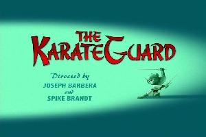 FileThe KarateGuard000