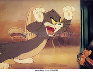 Mouse-in-the-house-warner-cartoon-with-tom-and-jerry-b3ky0m