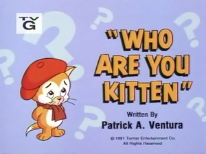 Who Are You Kitten title