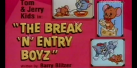 The Break 'n' Entry Boyz