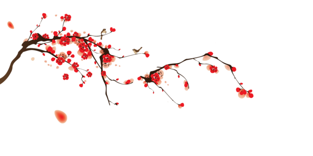 File:Tumblr static cherry blossoms.png