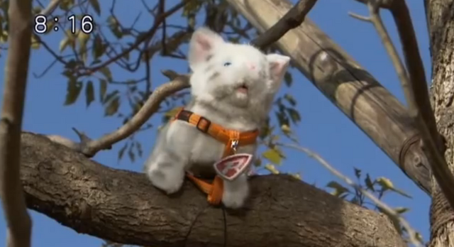 File:Rescue Meow.png