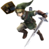 Hyrule Warriors Link Era of Twilight Tunic (Costume)