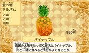 Pineapple JP