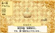 Garlic jp