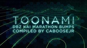 DBZ Kai 2016 Marathon Bumpers
