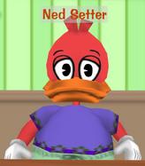 Ned Setter