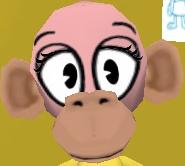 File:Large head normal muzzle monkey head.jpg