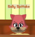 Sally Spittake