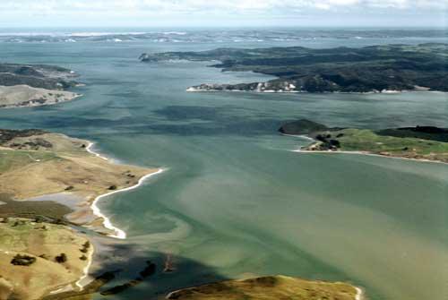 File:Kaipara harbour.jpg