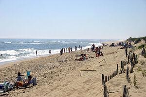 South Beach MV