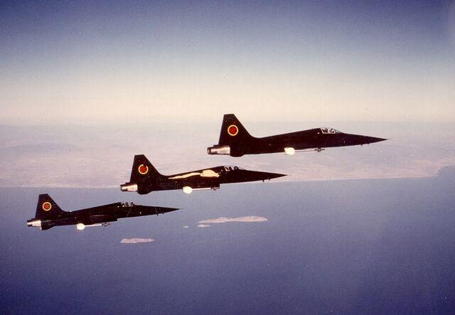 File:Movie black F-5 peeling paint 1.jpg