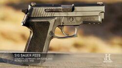 4x07-sig-sauer-p229