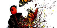 Gourmet Butterfly