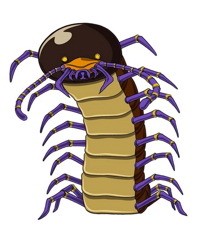 File:Giant Millipede GM.png