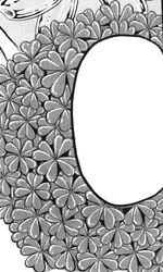 Hundred Leaf Clover1