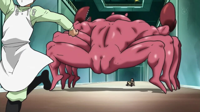 File:Muscle Crab back.jpg