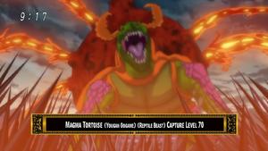 Magma Tortoise Eps 60