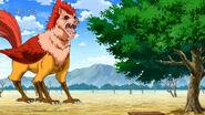 Niwatora standing