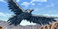 Rock Condor