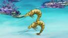 Piggyback Shrimp2