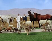 Evan Almighty.8