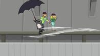 Raccoon umbrella