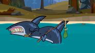 Goodbye sharks